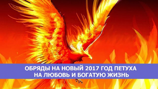 Обряды на новый 2017 год петуха на любовь и богатую жизнь.