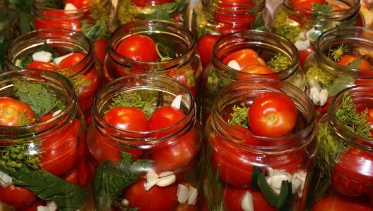 Технологическая инструкция маринованных помидоров