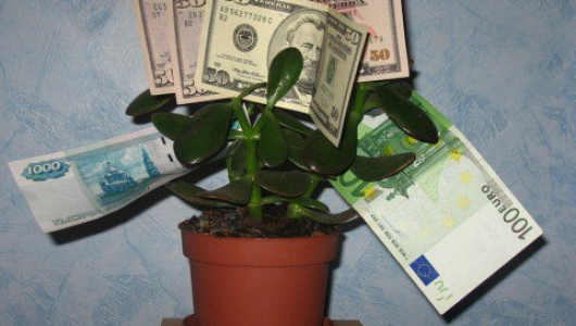 Ключи к изобилию: благодаря этим непреложным законам ты привлечешь деньги в дом!